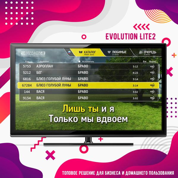 Караоке Evolution Lite2 топовое решение для бизнеса 4